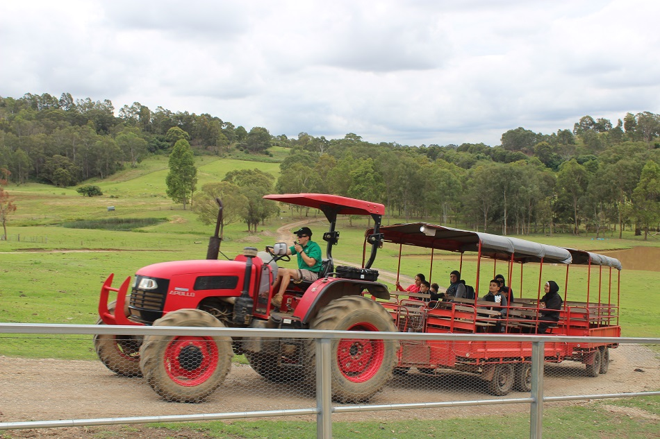 red tractor at Calsley Hill City Farm